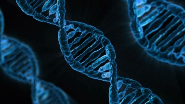 bệnh tâm thần có di truyền không 2