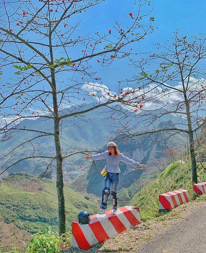 Đường Hà Giang ngập tràn hoa gạo