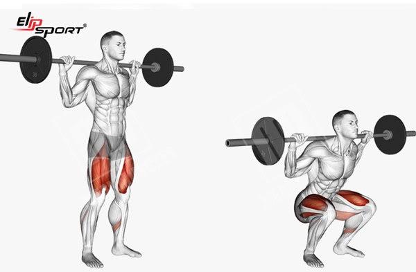 Bài tập squat với tạ